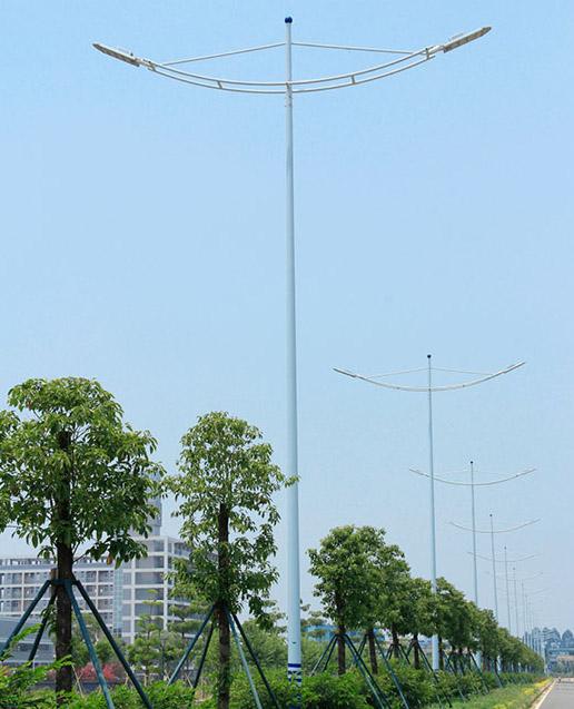 市政路灯13402